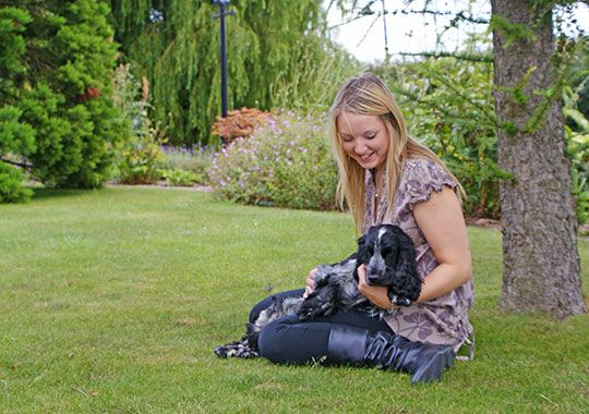 Dog Friendly Self Catering Holidays